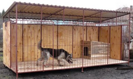 Вольер для собаки своими руками