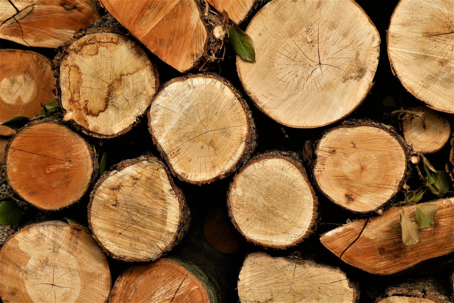 Использование влагомеров в деревообрабатывающей промышленности